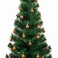 Британский ученый разработал уникальный алгоритм выбора новогодней елки