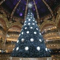 Лучшие новогодние елки планеты 2013 (фото)