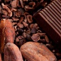 Любители шоколада реже страдают от инсульта