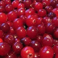 Названы главные продукты здоровья зимой