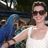 Энн Хэтэуэй в Майами атаковал попугай