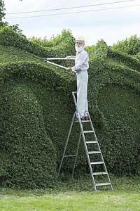 Cадовник из Англии, потратил 10 лет на создание 30-метрового дракона (фото)