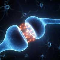 Здоровый сон улучшает память