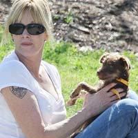 Мелани Гриффит намерена отсудить у Антонио Бандераса трех собак