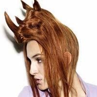 Дивовижні зачіски у вигляді тварин (15 фото)