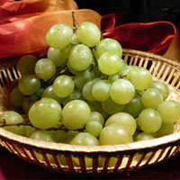 Лечение виноградом и его полезные свойства