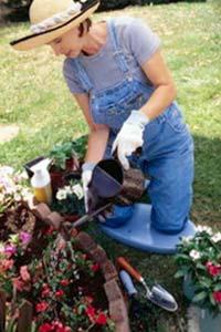 22 полезных совета для начинающих садоводов-огородников