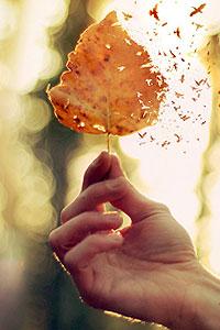 Как ухаживать за руками осенью: 5 простых правил
