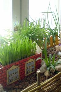 Огород на подоконнике: круглый год свежие овощи и зелень