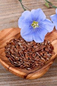 Семена льна: волшебное средство для очистки организма
