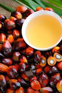 6 весомых причин отказаться от пальмового масла
