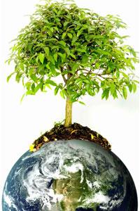 Спасение планеты начинается с мелочей