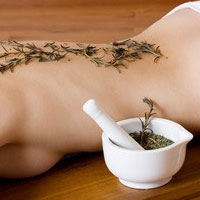 Лечим осенние болезни при помощи лекарственных трав