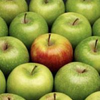 Яблочная диета: худеем и восстанавливаем обмен веществ