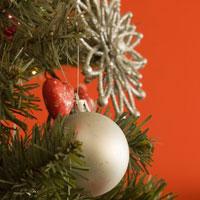 Новогодние елки опасны для здоровья?