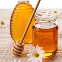 Мед - природный антибиотик, или чем лечить резистентный насморк