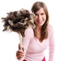 Домашняя пыль опасна для здоровья